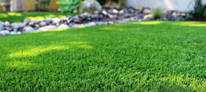 Устройство газонов – планировка